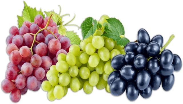 Boiled Grape Juice Recipe